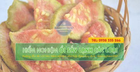 Kiểm nghiệm ổi sấy các loại trái cây sấy