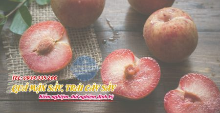 Kiểm nghiệm mận sấy trái cây sấy