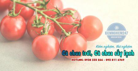 Kiểm nghiệm cà chua sấy các loại