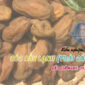 Kiểm nghiệm và thử nghiệm trái cây sấy